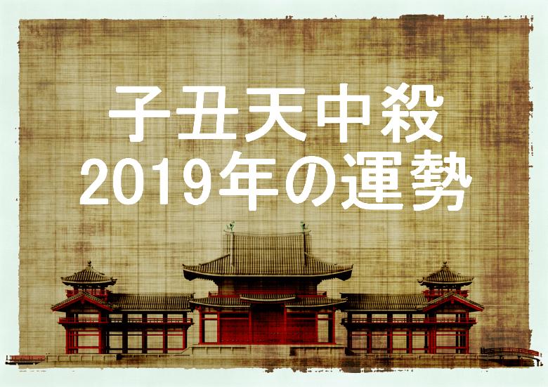 子丑天中殺 2019年 運勢