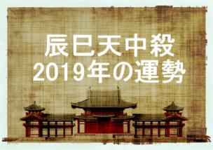 2019年 辰巳天中殺 運勢