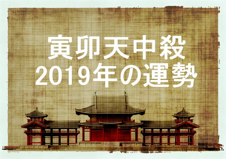 2019年 寅卯天中殺 運勢