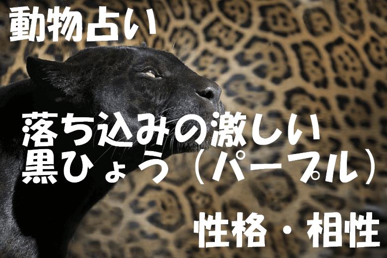 動物占い 黒ひょう パープル