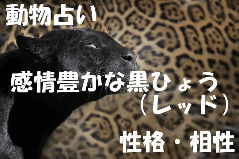 動物占い 黒ひょう レッド