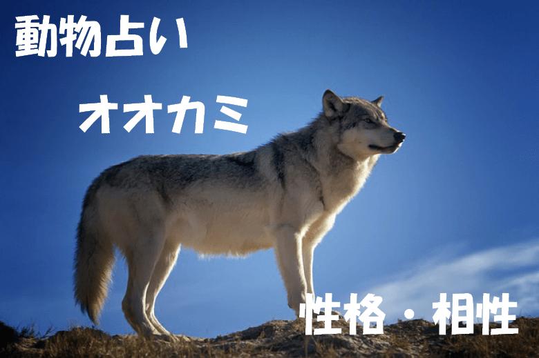 動物占い オオカミ