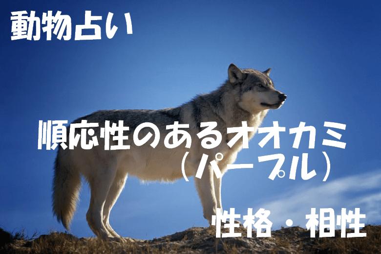 動物占い オオカミ パープル