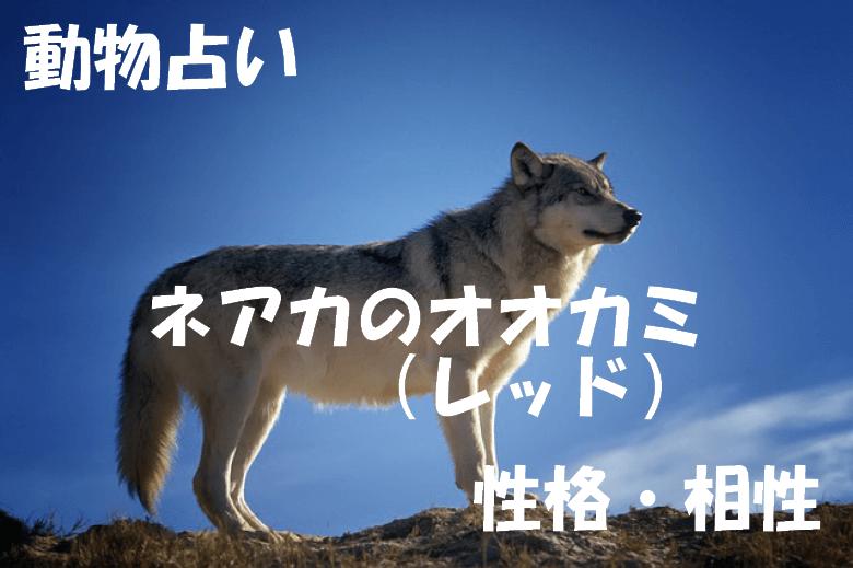 動物占い オオカミ レッド