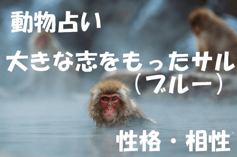動物占い サル ブルー