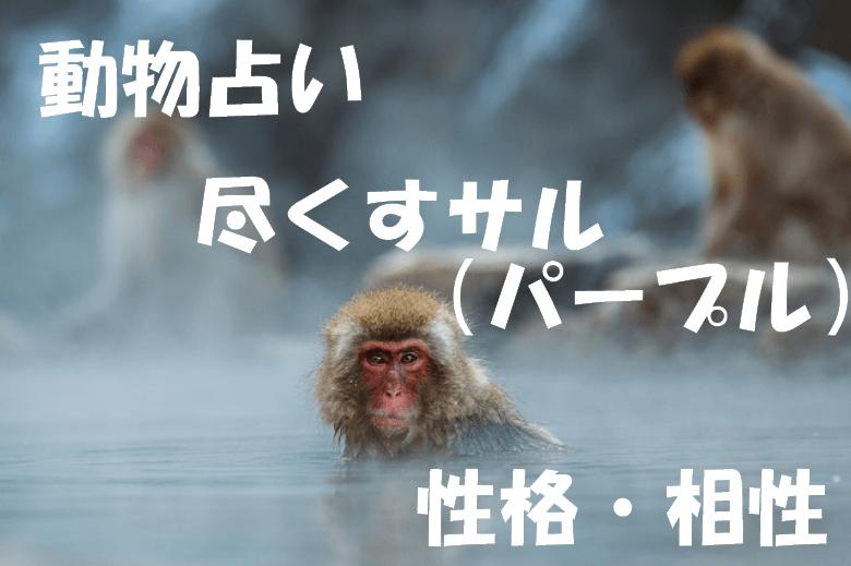 動物占い サル パープル