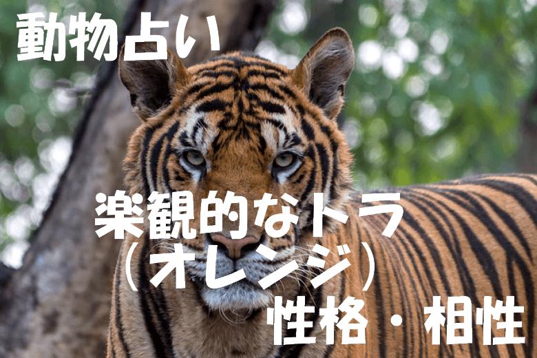 動物占い トラ オレンジ