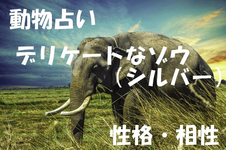 動物占い ゾウ シルバー