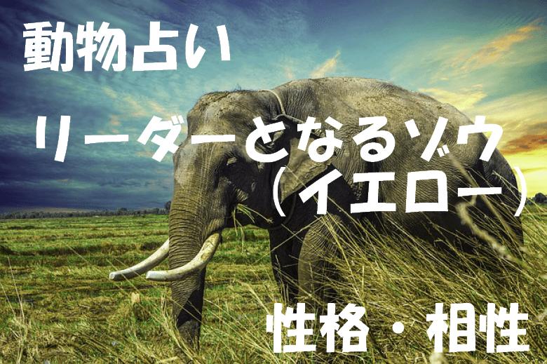 動物占い ゾウ イエロー